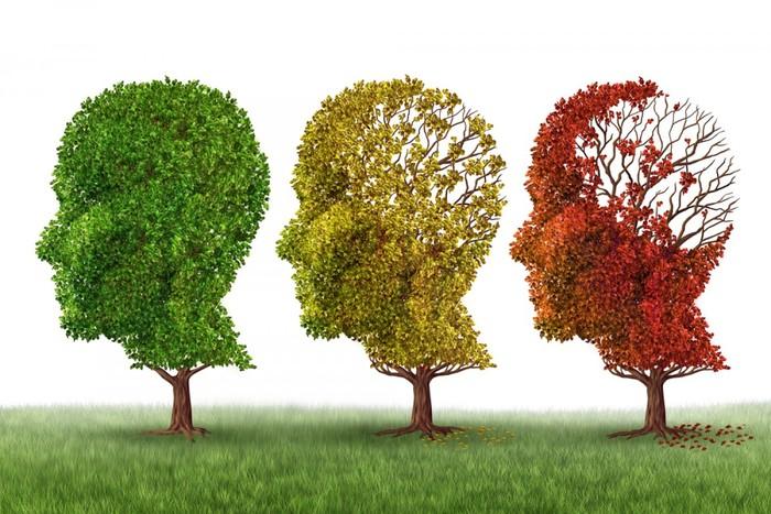 Alzheimerra jasateko arriskua listu bidez detektatu daiteke
