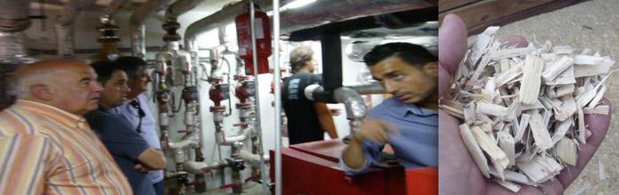 Biomasa ereduak ezagutzen, Aramaion ezarri aurretik