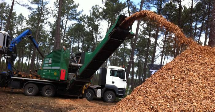 Biomasa etorkizuneko energia izateko lanean
