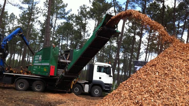 """Aramaioko Biomasa proiektuak """"erantzun positiboa"""" jaso du Eusko Jaurlaritzaren aldetik"""