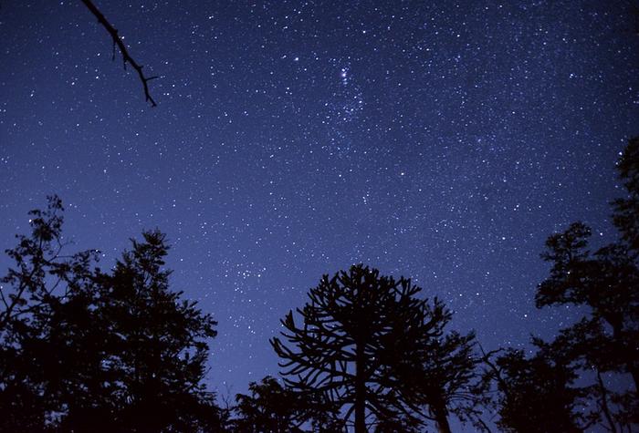 Gaua ikuspuntu astronomikotik