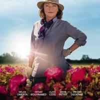 'Entre rosas' filma