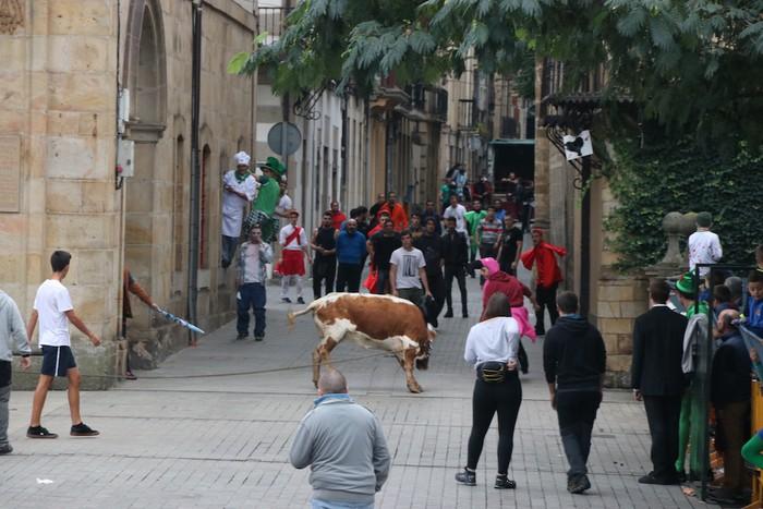 Sokamuturra egin dute Oñatiko jaietan - 17