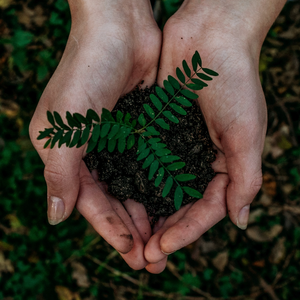 Ekologikoa posible delako