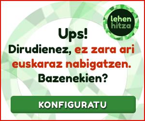 Goienako irakurleen %95ak euskara ez den beste hizkuntza batean du nabigatzailea