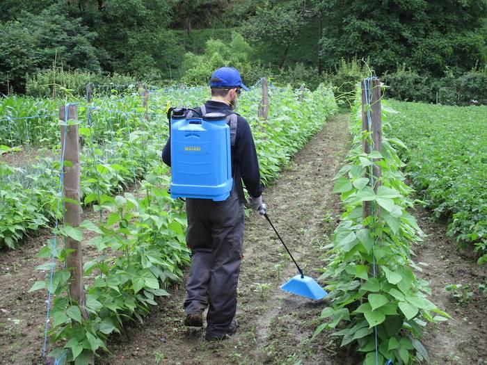 Astelehenean hasiko da produktu fitosanitarioak erabiltzeko ikastaroa