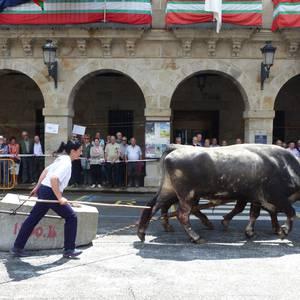 Idi-proben erakustaldia San Martin plazan