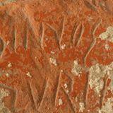 Iruña-Veleiara bisita antolatu du Jardunek urriaren 3rako