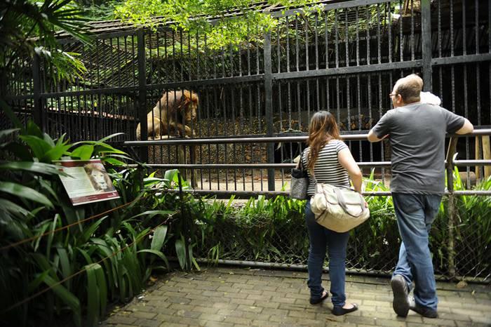 Ze iritzi daukazu zoologikoen gainean?