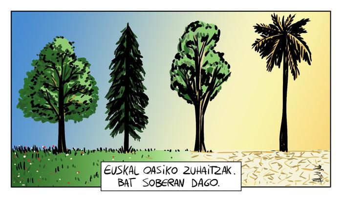 Euskal oasiko zuhaitzak