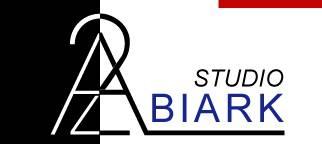 Biark Studio, S.L.P arkitektoak