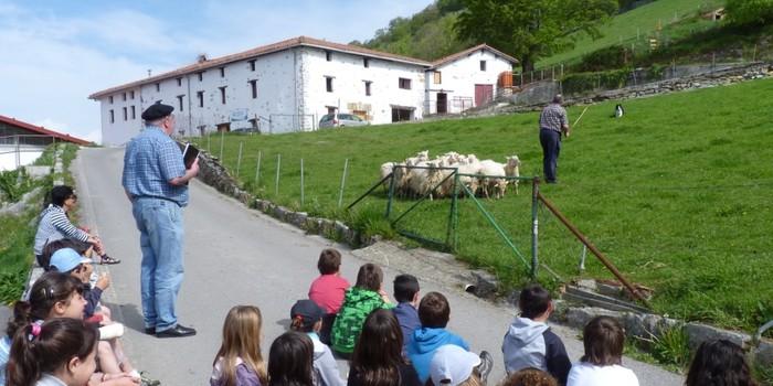 'Ongi etorri baserrira!' ekimenaren 4. edizioan Agarre eta Gomiztegi baserriak ezagutzeko aukera
