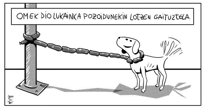 Lotuta