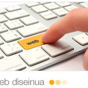 Web diseinua