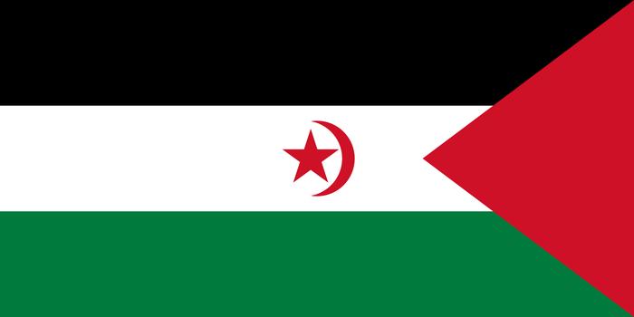 Mendebaldeko Saharaz mintzatuko dira egubakoitzean gaztetxean