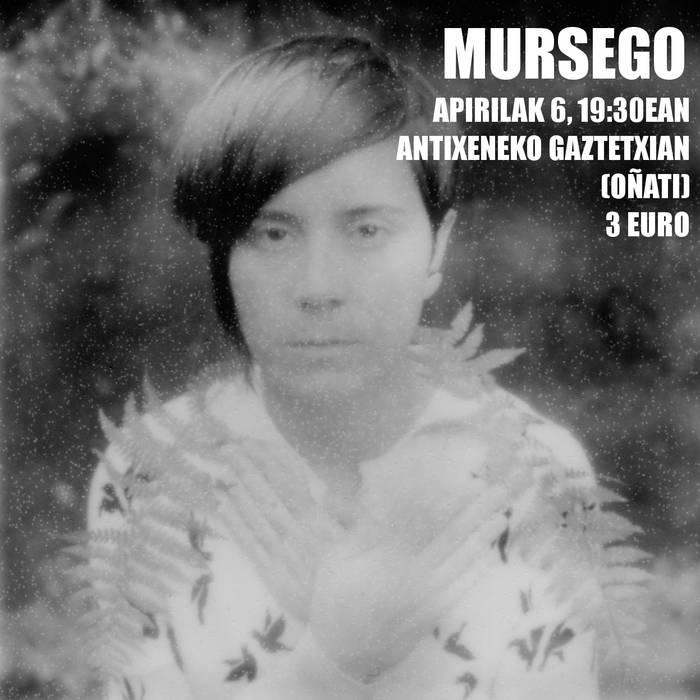 Mursego