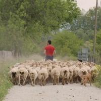 'Bideak' dokumentala