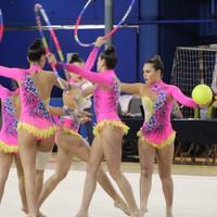 Ariznoako gimnasten erakustaldia