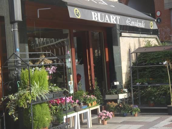 944803 Buart argazkia (photo)