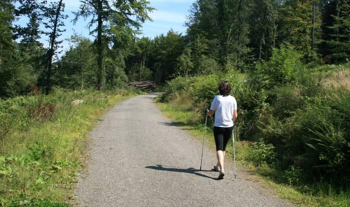 Ibarra kiroldegiko udako eskaintzak: igeriketa gaztetxoendako eta nordic walking