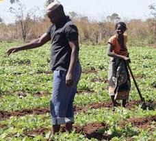 Mozambikeren gaineko hitzaldia Mundukidek gidatuta