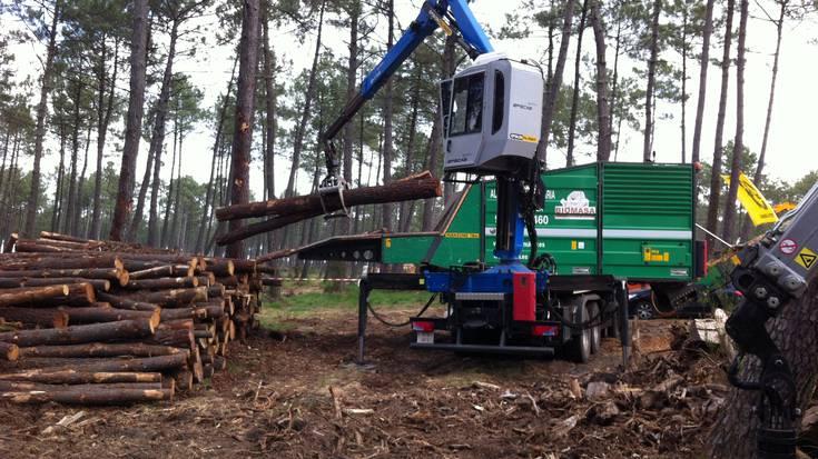 Biomasaren proiektua bideragarria da Aramaion