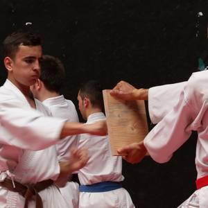 Shotokanekoen erakustaldi dotorea 20. urteurrena ospatzeko