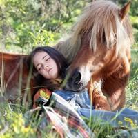 'Mi amigo pony' pelikula