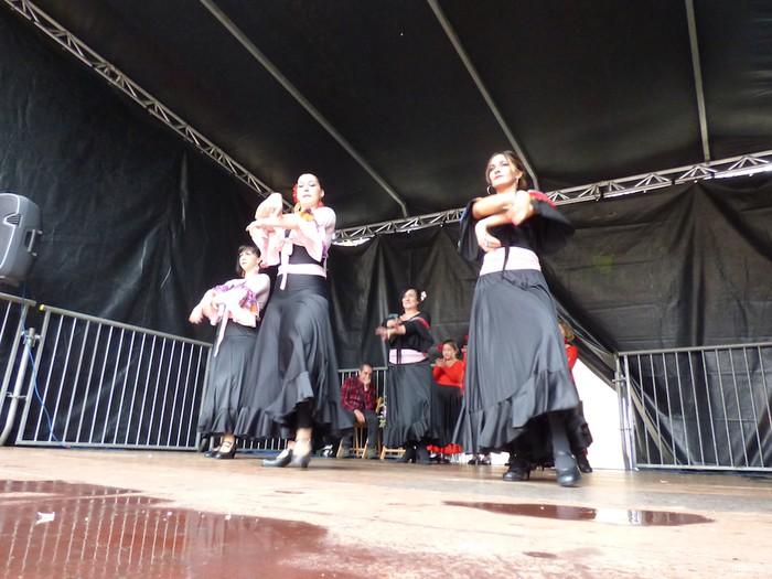 Ikusmina sortu du Maledantza taldeak flamenko erakustaldiarekin - 31
