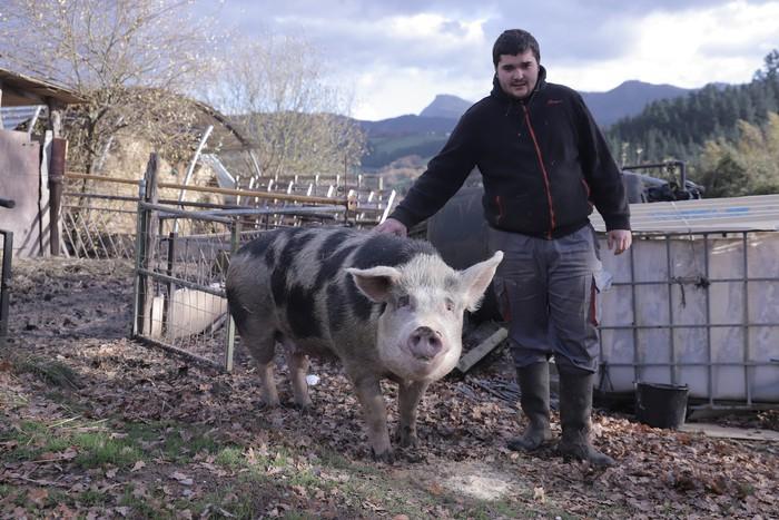 260 kilo inguru ditu 'Xanti Smith' aurtengo txerriak