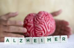 Alzheimerrarekin bizitzeko gakoak emango dituzte