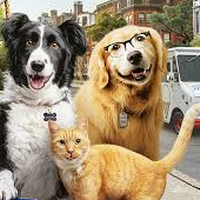 'Como perro y gatos: la patrulla unida' filma, gaztetxoendako