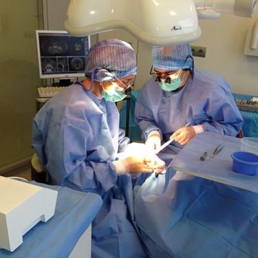 Inplantologia