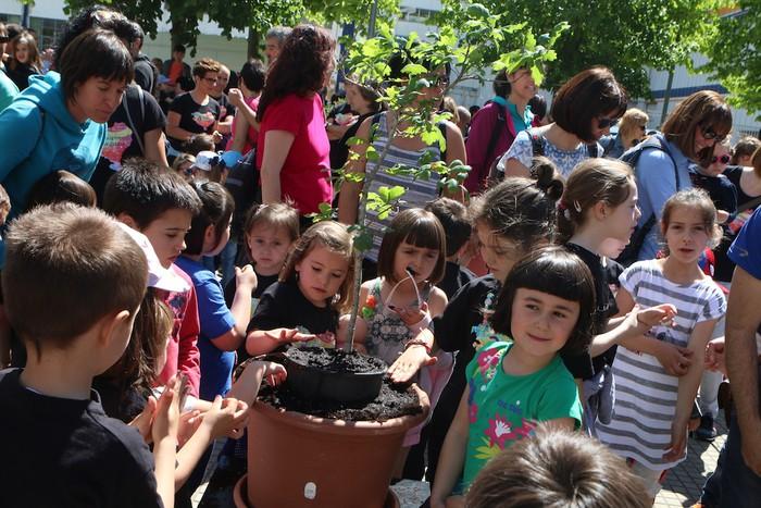 Udaberriaren algara eta festa Basabeazpin - 15