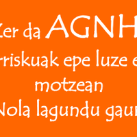 AGNH egunez egun