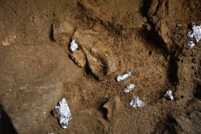 Gizakiak ustiatutako tresneria eta animalia aztarnak aurkitu dituzte