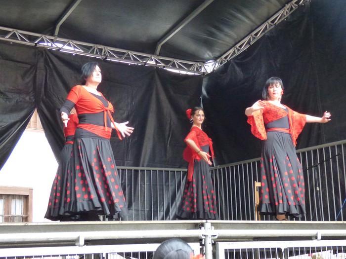 Ikusmina sortu du Maledantza taldeak flamenko erakustaldiarekin - 7