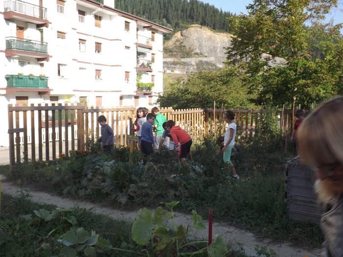 Kurtzebarri eskolaren proiektua, STEAM Euskadi Sarietako finalista