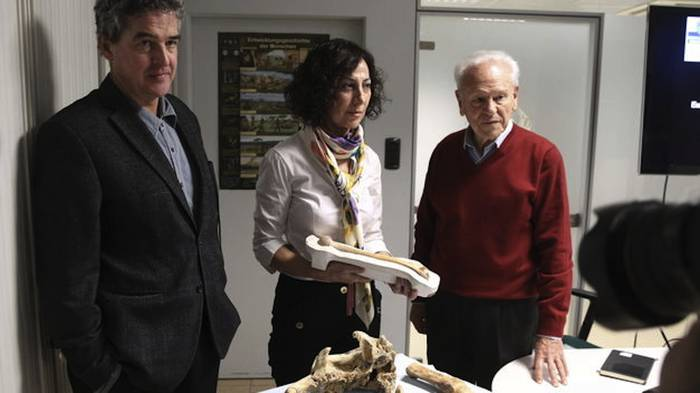 Lezetxikiko humeroa da Europako giza aztarna antzinakoenetakoa