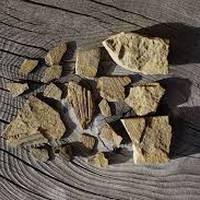 Familientzako paleontologia tailerra