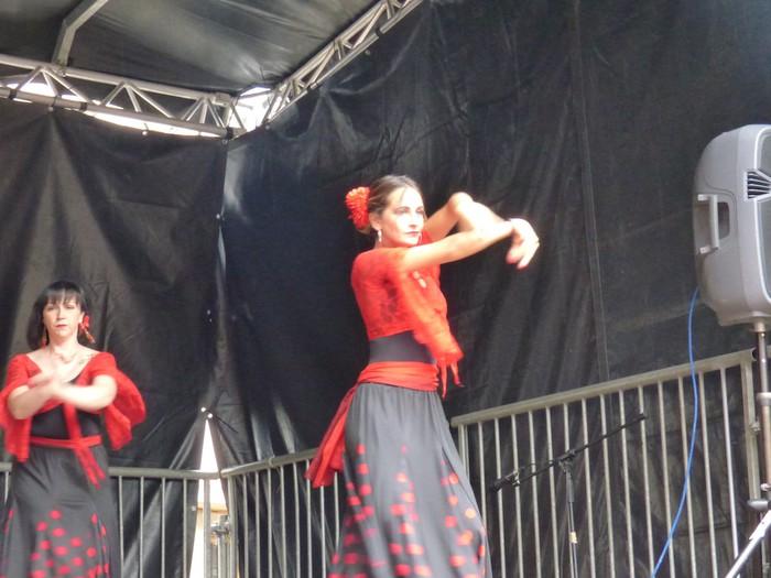 Ikusmina sortu du Maledantza taldeak flamenko erakustaldiarekin - 9