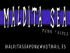 Punk rock kontzertua