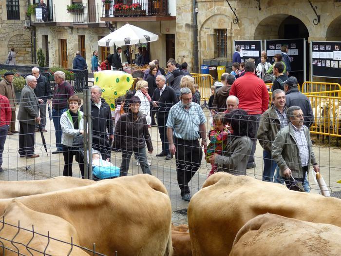 San Isidro azoka ospatuko dute Antzuolan [ZAPATUA, 11:00etatik aurrera]