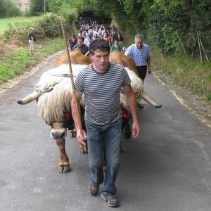 San Martzial jaiak 2011