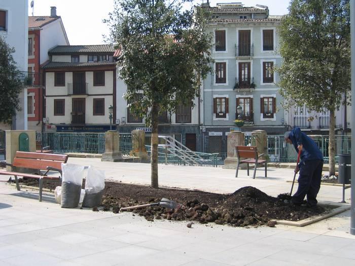 Zintarria jarri diete Herriko Plazan dauden lorategiei